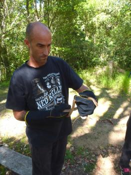 Wrestling with Venomous Snakes